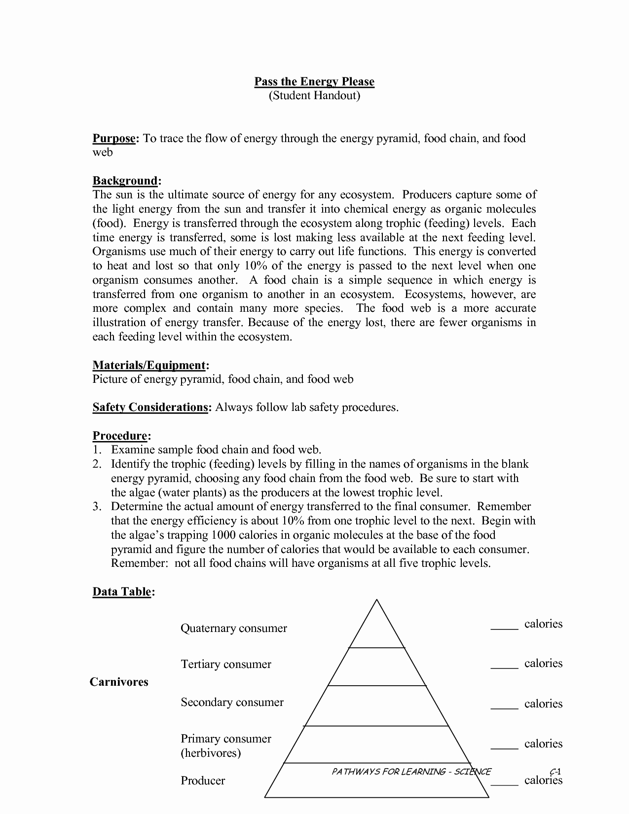 Energy Flow Worksheet Answers Best Of 13 Best Of Ecological Pyramids Worksheet Answer Key