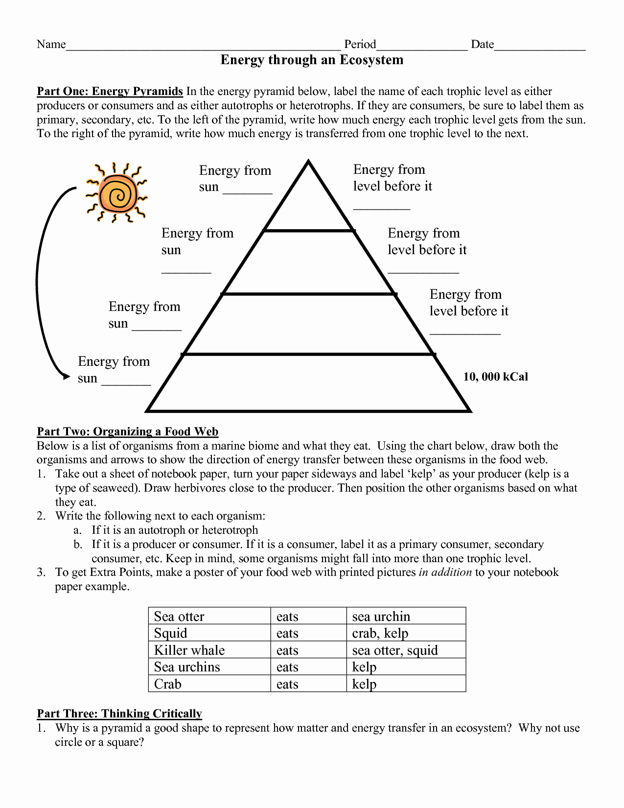 Energy Flow Worksheet Answers Inspirational 12 Best Of Energy Pyramid Worksheet Middle School