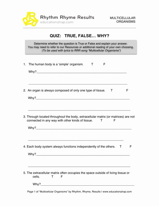 Energy Transformation Worksheet Middle School Inspirational 15 Best Of Transformation Worksheets Middle School