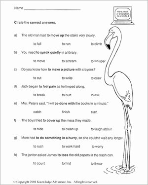 English Worksheet for Grade 2 Lovely 10 Best Of Have Has Worksheets and Printable