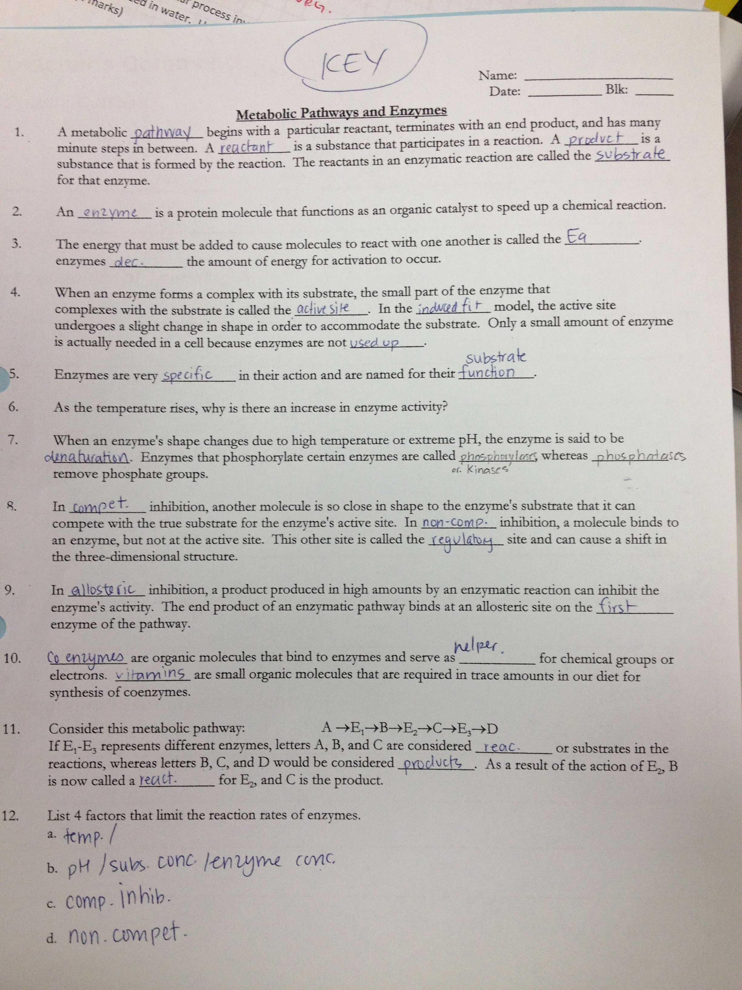 Enzyme Reactions Worksheet Answer Key Awesome 301 Moved Permanently