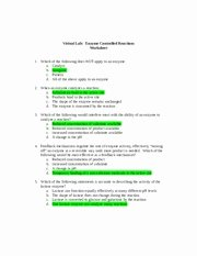 Enzyme Reactions Worksheet Answer Key Best Of Virtual Lab Enzyme Controlled Reactions Worksheet
