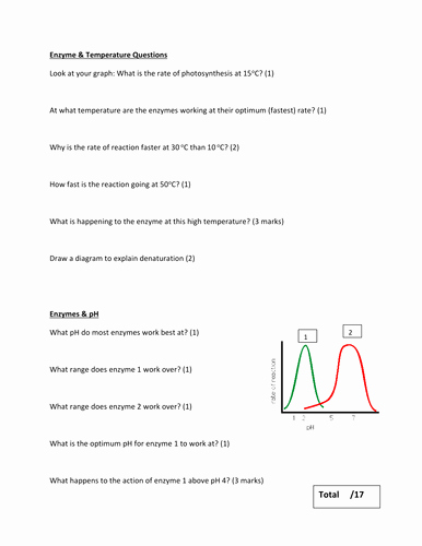 Enzyme Reactions Worksheet Answer Key Luxury the Effect Of Temperature & Ph On Enzyme Activity by