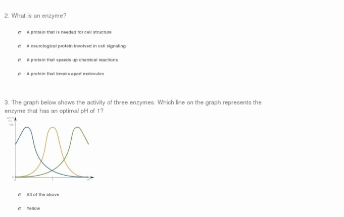 Enzyme Review Worksheet Answers Fresh Our Review Of Quiz Worksheet Effects Enzyme Activity