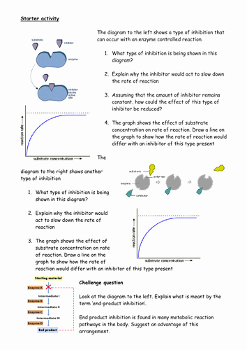 Enzyme Review Worksheet Answers New Enzyme Inhibitors Starter Plenary by Cmrcarr