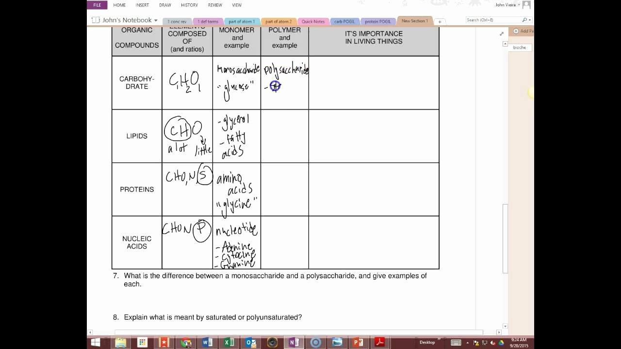 Enzymes Worksheet Answer Key Beautiful Answers Biochemistry Worksheet