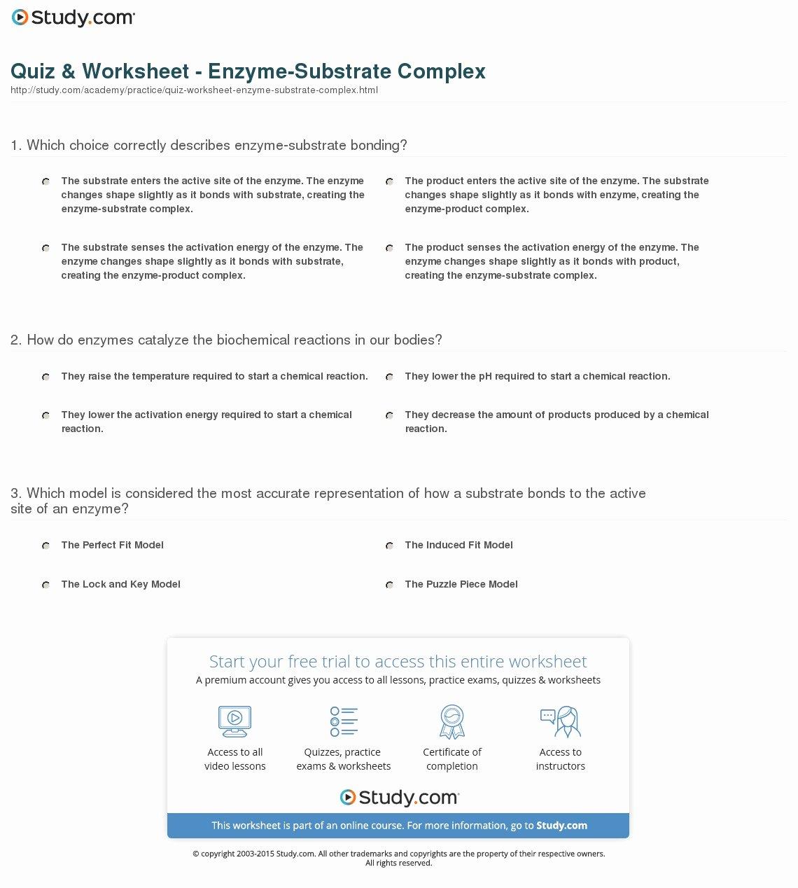 Enzymes Worksheet Answer Key Elegant Quiz & Worksheet Enzyme Substrate Plex
