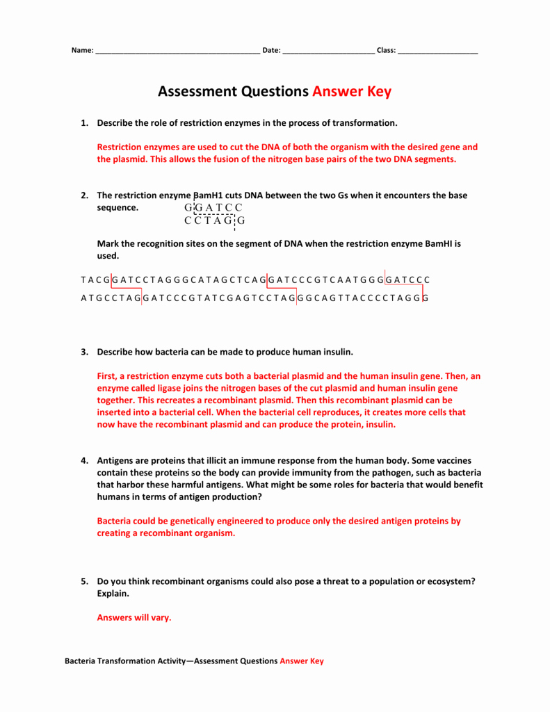 Enzymes Worksheet Answer Key Luxury Enzymes Worksheet Answer Key Math Worksheets Restriction