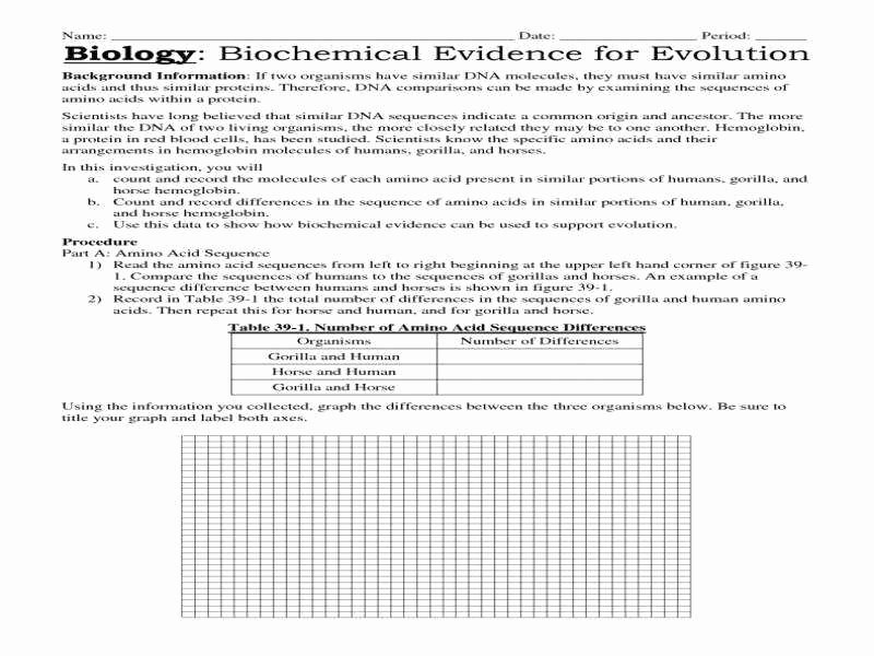 Evidence for Evolution Worksheet Answers Lovely Evidence for Evolution Worksheet