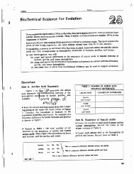 Evidence for Evolution Worksheet Answers Luxury Sw Science 10 Unit 1 Meiosis Worksheet Mrs Gm Biology 200