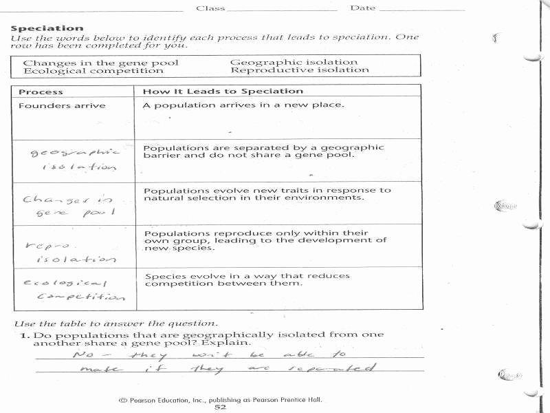 Evidence for Evolution Worksheet Awesome Evidence Evolution Worksheet