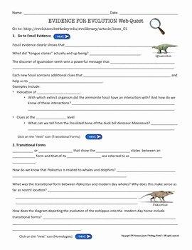 Evidence for Evolution Worksheet Awesome Evidence for Evolution Webquest by Biology Roots