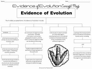 Evidence for Evolution Worksheet Elegant Evidence Of Evolution Concept Map for Notes Review or