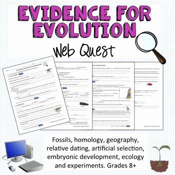 Evidence for Evolution Worksheet Fresh Evidence for Evolution Webquest