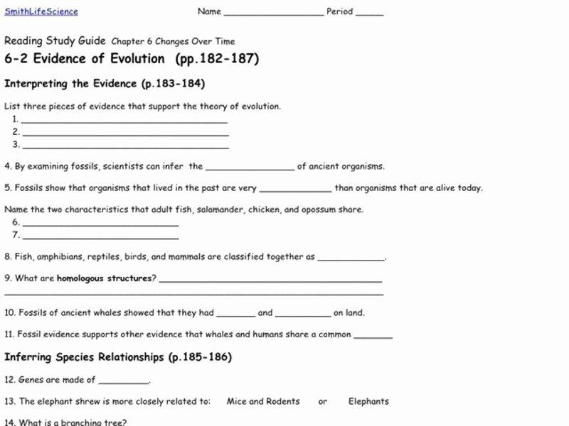 Evidence for Evolution Worksheet Fresh Evidence Of Evolution Worksheet for 9th 12th Grade