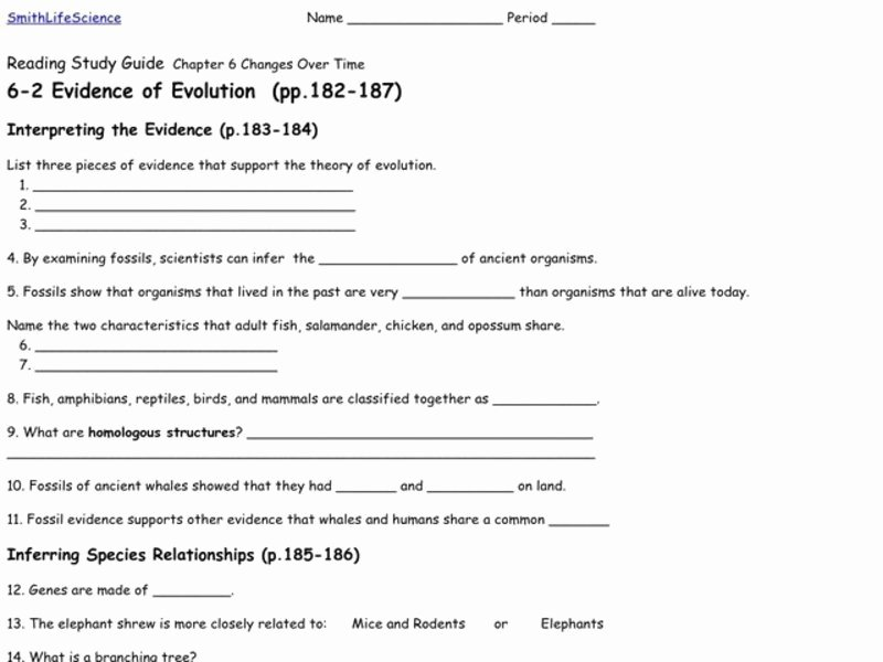 Evidence Of Evolution Worksheet Answers Elegant Evidence Of Evolution Worksheet for 9th 12th Grade