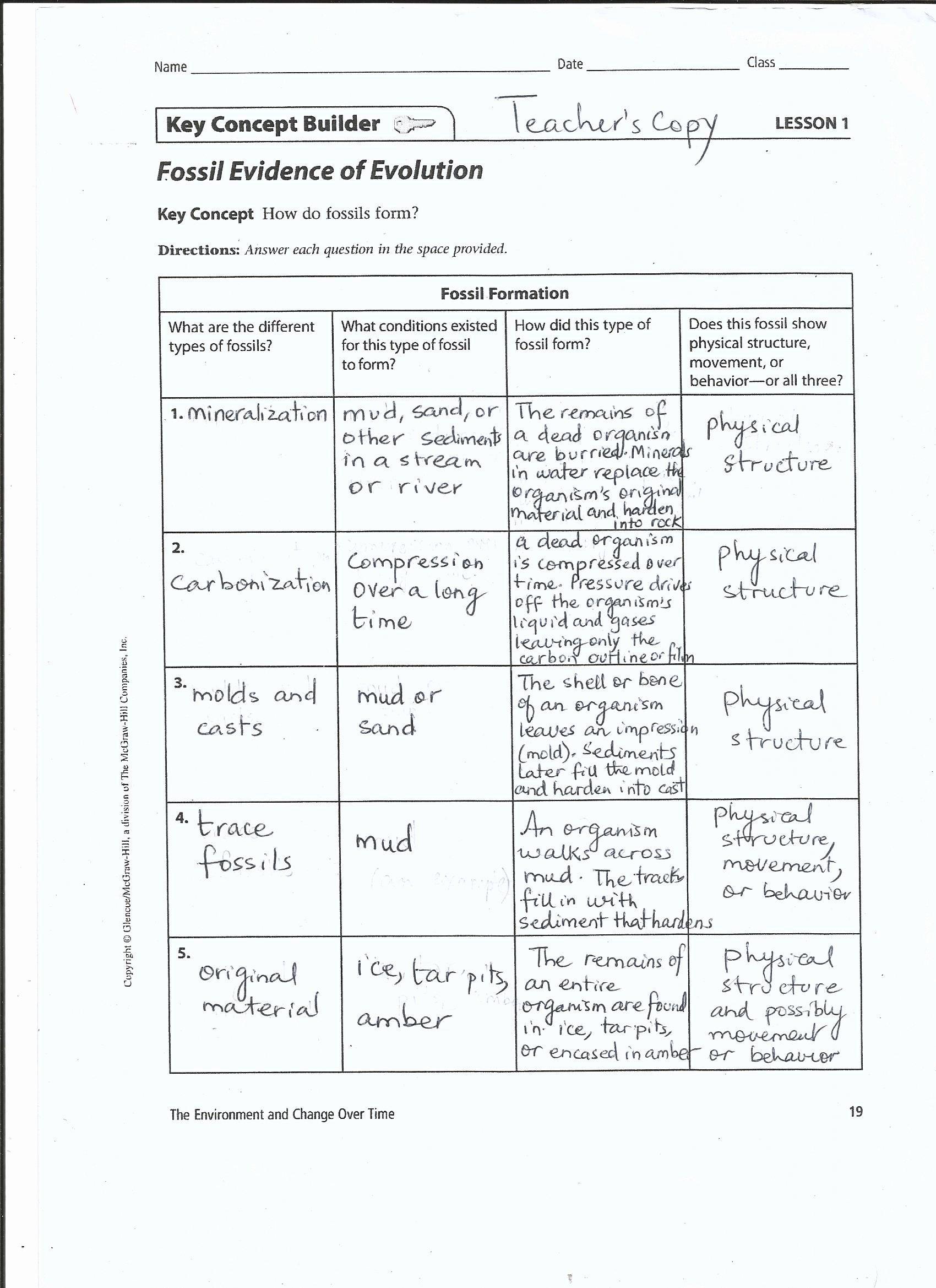 Evidence Of Evolution Worksheet Inspirational 45 Evidence for Evolution Worksheet Biochemical Evidence