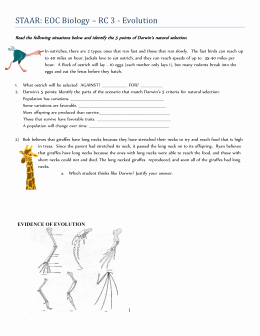 Evolution and Natural Selection Worksheet Beautiful Evolution Evolution by Natural Selection Worksheet