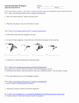 Evolution and Natural Selection Worksheet Elegant Studylib Essys Homework Help Flashcards Research