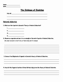 Evolution and Natural Selection Worksheet Luxury Evolution Natural Selection Worksheet by Engaging