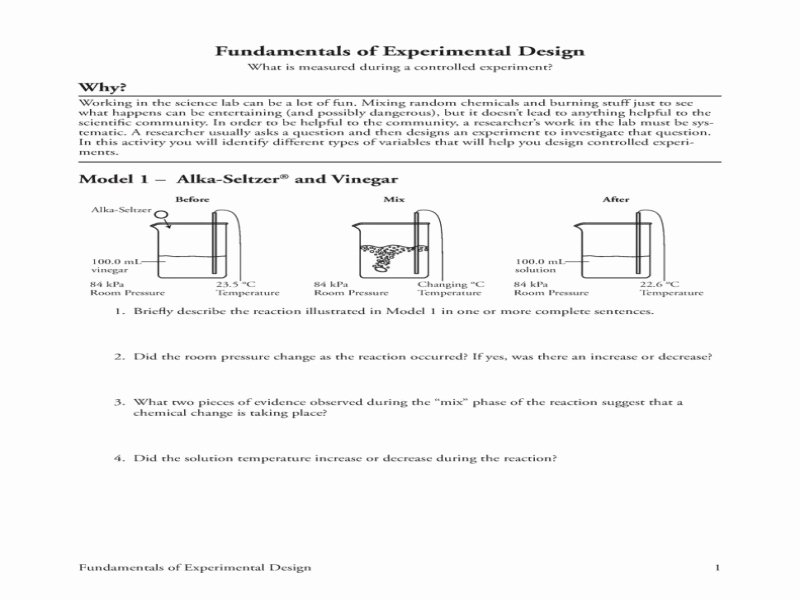 Experimental Design Worksheet Answers New 2 Bcb015dddc62ee9922c3919d0cbe087d Free
