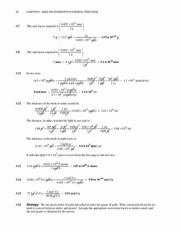 Exponential Growth and Decay Worksheet Lovely Exponential Growth and Decay Worksheet