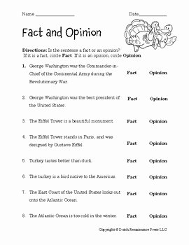 Fact or Opinion Worksheet Lovely Fact and Opinion Worksheets by Tim S Printables