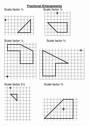 Finding Scale Factor Worksheet New Enlargement with A Fractional Scale Factor by