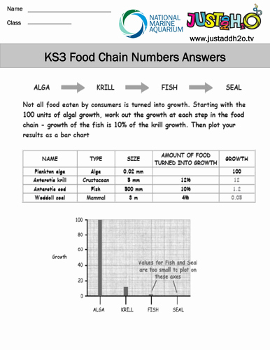 Food Chain Worksheet Pdf Beautiful Ks3 Ecosystems and Food Webs by Justaddh20 Teaching
