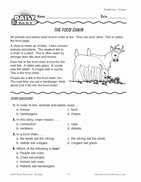 Food Chain Worksheet Pdf Best Of the Food Chain