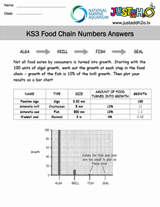 Food Chain Worksheet Pdf Fresh Ks3 Food Chain Worksheet Answers Pdf