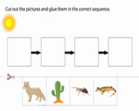 Food Chain Worksheet Pdf Lovely Food Chain Worksheets
