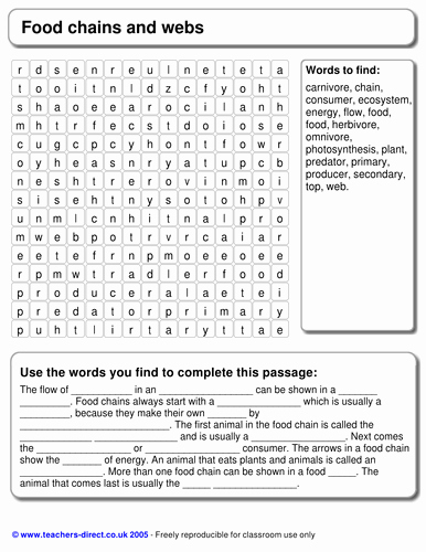 Food Chain Worksheet Pdf Unique Food Chains and Webs Word Search with Cloze by Bennettej