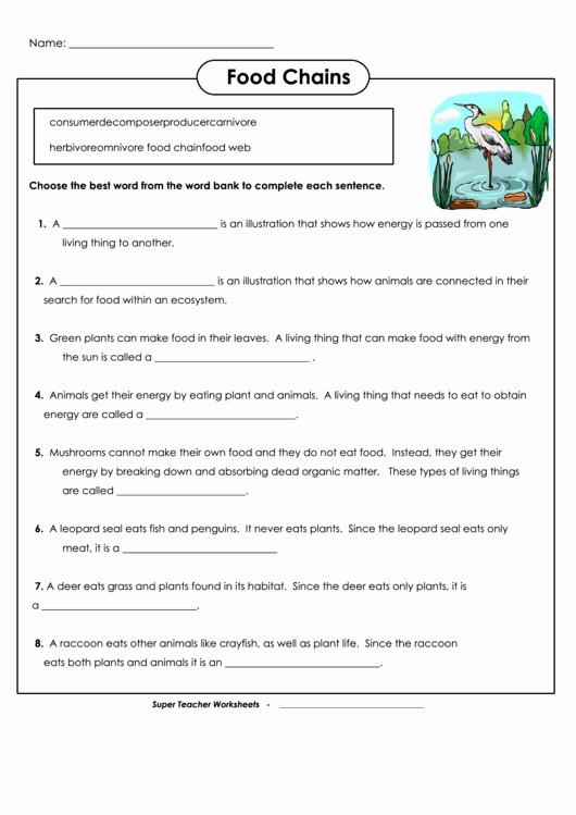 Food Chain Worksheet Pdf Unique Food Chains Biology Worksheet Printable Pdf