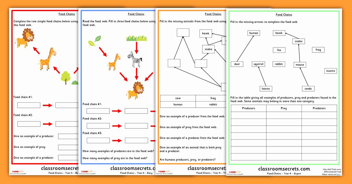 Food Chains and Webs Worksheet Elegant Year 4 Food Chains and Food Webs Science Worksheets