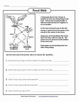 Food Web Worksheet Answer Key Fresh Preview 1 Science Worksheets