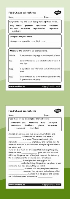 Food Web Worksheet Answer Key Fresh Worksheets Food Chains Science Pinterest