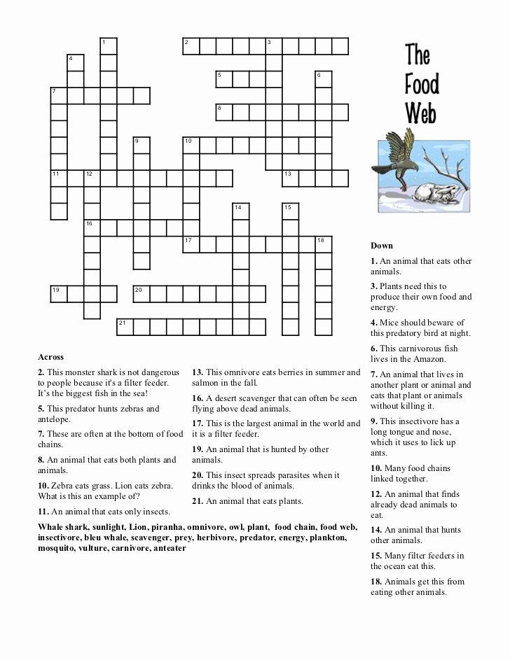 Food Web Worksheet Answer Key Lovely Food Web Crossword