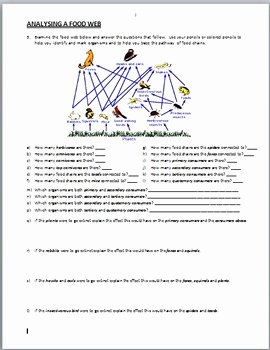 Food Web Worksheet Answer Key Unique Food Webs Powerpoint Activity with Worksheet Editable by