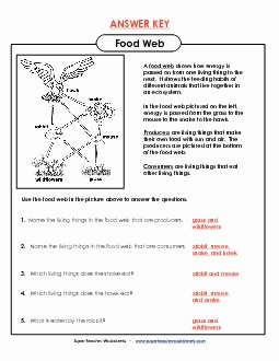 Food Web Worksheet Answers Elegant Food Chains and Webs Worksheet Answer Key