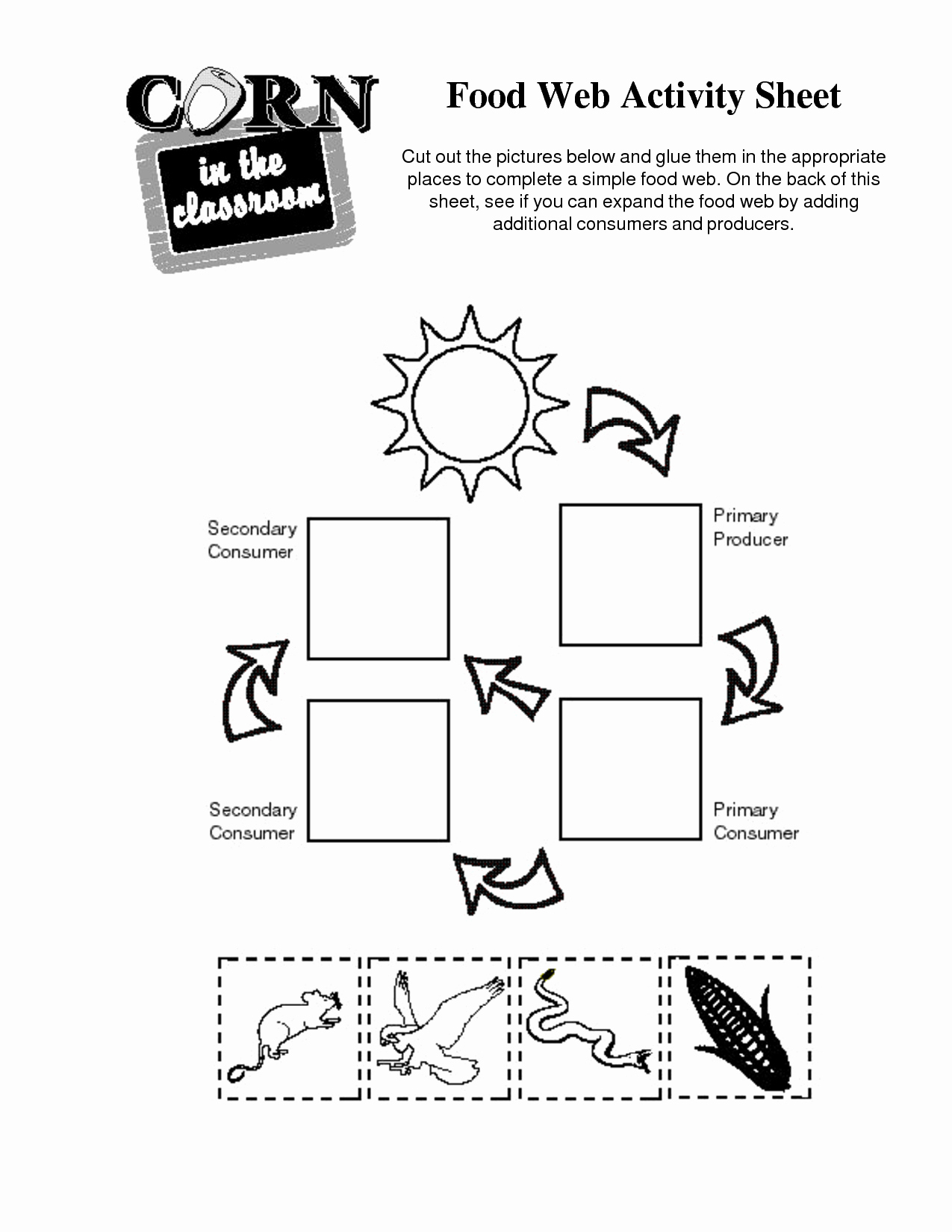 Food Web Worksheet Answers Elegant Worksheet Food Web Worksheets Grass Fedjp Worksheet