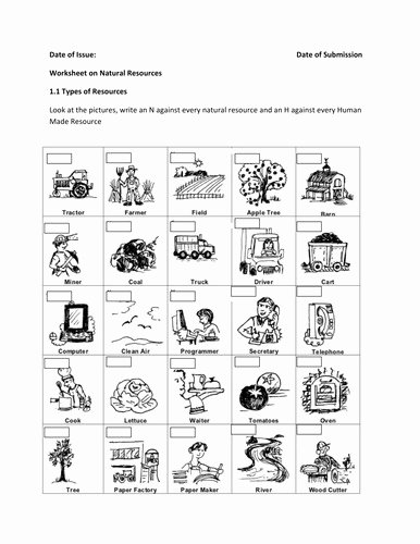 Food Web Worksheet High School Awesome Food Web Worksheet