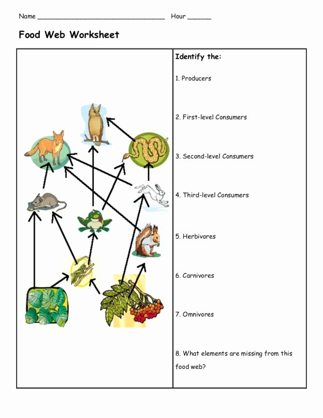 Food Web Worksheet Pdf Inspirational Food Web Worksheet Graphic organizer for 3rd 5th Grade