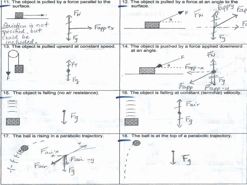 Forces Worksheet 1 Answer Key Unique Free Body Diagram Worksheet with Answers Free Printable