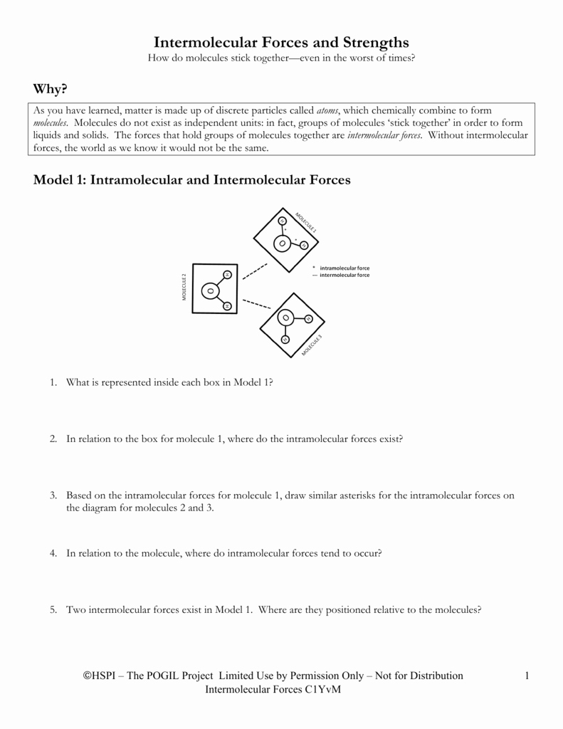 Forces Worksheet 1 Answer Key Unique Intermolecular forces Lab Worksheet