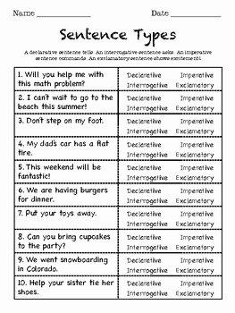 Four Types Of Sentences Worksheet Luxury Sentence Type Worksheet by Hope Lybeer