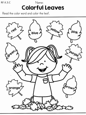 Free Fall Problems Worksheet Best Of Fall Literacy Activities and Worksheets No Prep