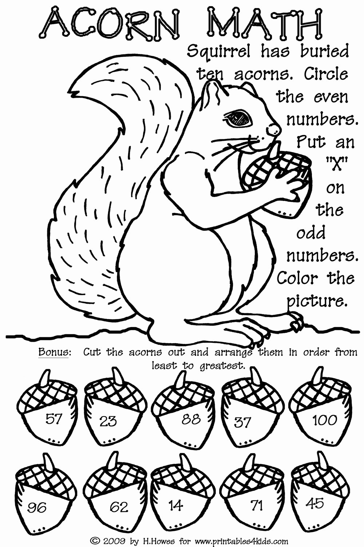 Free Fall Problems Worksheet Lovely 15 Best Of Penguin Addition Worksheet Math