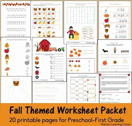 Free Fall Worksheet Answers Beautiful Fall Worksheet Packet for Preschool First Grade