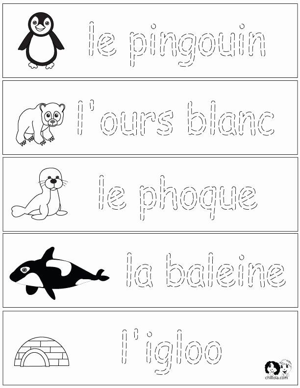 French Worksheet for Kids Elegant 1000 Images About French Worksheets for Children